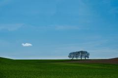 Minimalistisch landschap